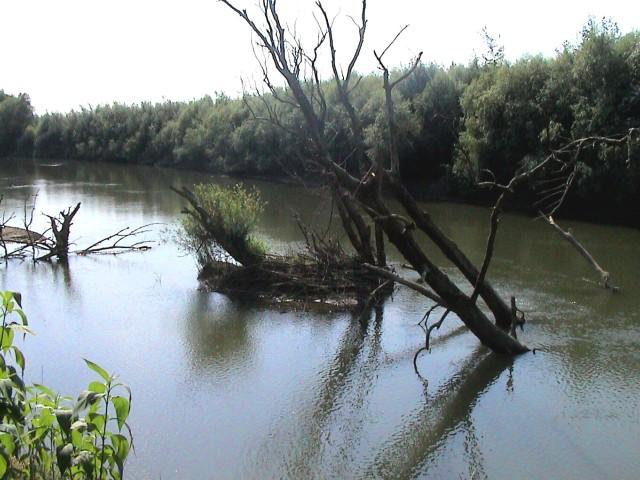 64,96 km - vteká riečka ošva pravý breh rieky